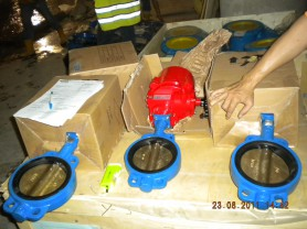 Motorized Actuator Butterfly Valves